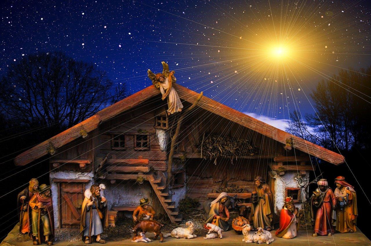 christmas, clinic, birth