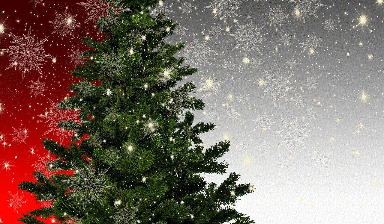christmas, fir tree, mockup
