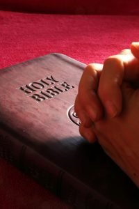 bible, holy, hands