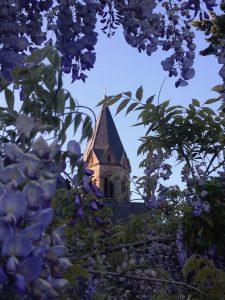 steeple, blossom, bloom
