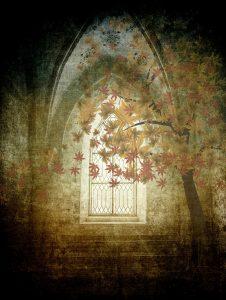 texture, background, window-2082776.jpg